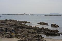 20160424-DSC_8885.jpg (d3_plus) Tags: sea sky fish beach nature japan nikon scenery diving daily snorkeling  28105mmf3545d nikkor  kanagawa hayama     dailyphoto  apnea  thesedays  28105    28105mm skindiving  zoomlense     28105mmf3545 d700 281053545 nikond700 aiafzoomnikkor28105mmf3545d 28105mmf3545af   aiafnikkor28105mmf3545d