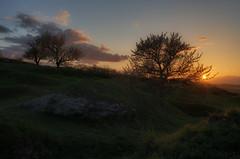 Kirschblte (Rainer Schund) Tags: sunset sun nature clouds three spring nikon natur stein hanami frhling felsen kirschblte unberhrt nikond700 naturemasterclass natureexploring