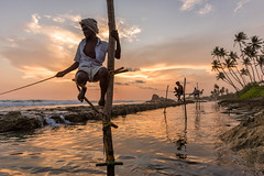 Stilt Fishing in Sri Lanka (YBshadowman) Tags: ocean above travel sunset sea summer sky people male men nature water work landscape coast fishing fisherman waiting sitting sundown indianocean wave sunny pole catching stick balance srilanka ceylon typical galle endurance job groupofpeople stilts attraction fishman traditionalculture fishingrod realpeople famousplace moodysky asianculture indigenousculture stiltfishing srilankanculture travellocations
