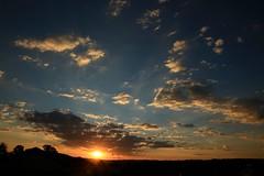 gazing at the sunset (peet-astn) Tags: sunset sky sun clouds tramonto sole nebbia johannesburg ceilo