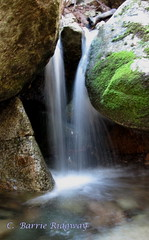 Waterfall, Lyrebird Trail, Tidbinbilla Nature Reserve, near Canberra (BRDR images) Tags: waterfall australia canberra naturephotography australiancapitalterritory tidbinbillanaturereserve photoecology ourfragileearth lyrebirdtrail