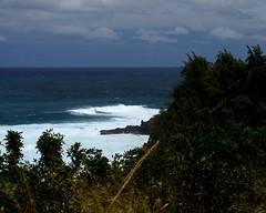 DSC_5429 e5 (J Telljohann) Tags: hawaii maui hookipa