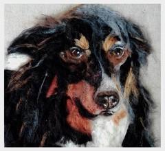 Shetland Sheepdog (Needle Feltings by - Dexihexi Pouch Puppies) Tags: dog painting felting sheepdog commission shetlandsheepdog petportrait petmemorial woolpainting felteddog dexihexipouchpuppies