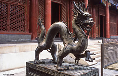 Hello # China_2006_2560 # Leica R9 Fuji Provia100 - 2006 (irisisopen f/8light) Tags: china leica color film fuji beijing slide farbe provia peking 100f diafilm r9 irisisopen