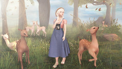 Chasing Butterflies (Bishybaby) Tags: summer forest butterfly spring blues deer sl secondlife anc sorbet uber illi moremore vco fawny tentacio kustom9 we3roleplay mudskin sanarae