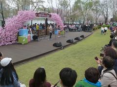 C16-Seoul-Parc Seokcho(10) (jbeaulieu) Tags: seoul coree parc seokcho