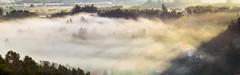 Foggy morning (Tom Zedinek) Tags: morning santiago de nikon grlitz 300mm compostela adapter monte meyer kf pedroso sunrice fogs optik czphoto d3100