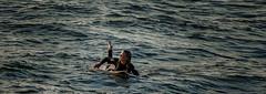 OCEAN BEACH 103 (Detective Steve) Tags: ocean california surf sandiego surfer paddle surfing pacificocean surfboard oceanbeach wetsuit surfergirl