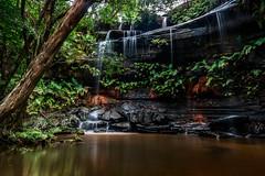 Girrakool waterfall (kylieardill) Tags: trees green nature rock landscape waterfall nationalpark walk australia nsw newsouthwales centralcoast ochre bushwalk rockpool trailwalk girrakool