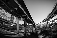 Converging Overpasses At Buffalo Bayou (Mabry Campbell) Tags: blackandwhite usa photography photo downtown texas photographer unitedstates image january houston fisheye photograph 100 15mm fineartphotography f35 architecturalphotography overpasses 2015 commercialphotography buffalobayou harriscounty architecturephotography 300sec fineartphotographer mabrycampbell january182015 20150118h6a2856
