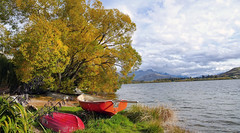 Lake Hayes. Otago. NZ (Bernard Spragg) Tags: water lumix landscapes scenery lakes lakehayes bridgecameras