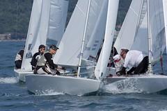 Nordio16_27 (Alberto Lucchi) Tags: club star sailing yacht sail tito regatta trieste regata 2016 coppa nordio adriaco