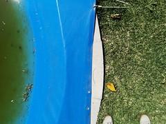 (antonioluisousa) Tags: feet water swimingpool benavente