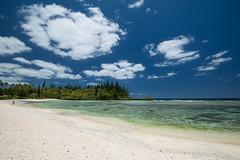 21112015-DSC_5697 (ciol46) Tags: island ile nouvellecaldonie newcaledonia caledonia mar loyalty baie tortues caldonie loyaut mebuet