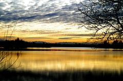 Base de loisirs de la Ramée- Toulouse (31) (FloLfp) Tags: france nature montagne soleil pentax lac ciel toulouse loisirs pyrénées balade