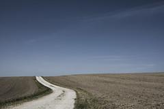 Anglų lietuvių žodynas. Žodis cart-track reiškia krepšelis-track lietuviškai.