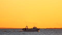 Cau el sol (lluiscn) Tags: sea sky orange yellow azul mar barco cel vila alicante cielo blau terra pesca naranja pv aigua groc tierra taronja vaixell alacant pas mediterrani pesquero joiosa valenci pesquer faenar
