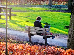 Work to do to do to do (streamer020nl) Tags: park winter woman nature work bench office laptop werkplek frau arbeit vrouw werk bankje 2016 250116