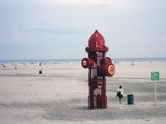 Dog Beach (Brundlefly85) Tags: summer dog sun art beach dogs beautiful photo sand colorful nj sunny wildwood summers 2015