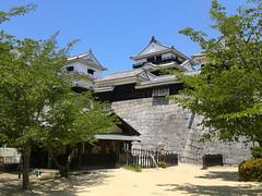 matsuyama castle (doctor pedro) Tags: trees castle japan shikoku walls fortifications ehime matsuyama