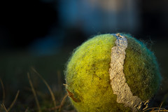 The Game is Over (Ludvius) Tags: red ball tennis ludovicophotography wwwludovicophotocom