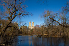 New York_Central Park.jpg (Stang-33) Tags: park christmas new york city nyc autumn trees winter red panorama plants usa green castle fall nature colors beautiful leaves yellow see leaf pond colorful wasser theatre outdoor turtle manhattan united great central lawn himmel shakespeare eldorado fallen belvedere states blau ochre leafless schloss turm baum delacorte