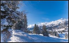 Winter in den Alpen (rapp_henry) Tags: schnee winter snow mountains schweiz switzerland berge alpine alpen landschaft ausblick graubnden nikond800 tamron1530mm28