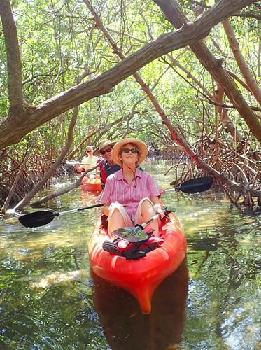 3_4_16 Kayak Tour Sarasota FL 01