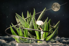 Moonwalker (Fusselhirnchen) Tags: people little tiny makro figuren noch modellbau faller merten preiser h0 miniaturen pppies miniaturwelten
