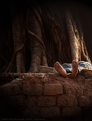 IN THE TWILIGHT OF LIFE (GOPAN G. NAIR [ GOPS Photography ]) Tags: life man tree photography twilight artistic sleep end gops peepal gopan gopsorg gopangnair photographybygopan