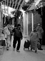 - Fs (simon_berlin62) Tags: life africa street bali photography north el du morocco maroc maghreb medina afrika rue marokko nord afrique 2016 fs   nordafrika  fselbali