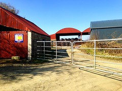 Farm gateway (Eire's Gorgeous Golden Gorse representative) Tags: ireland red irish sign barn rural fence gate shadows farm cork scenic agriculture bales hdr iphone5 meelin 2016onephotoeachday
