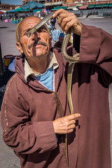Snake charmer - Djemaa el Fna (tattie62) Tags: travel people tourism snake places morocco marrakech snakecharmer djemaaelfna