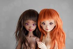 Momoni x Momoni (Lola  Atelier Momoni +) Tags: doll bjd momoni aterliermomoni artistoll