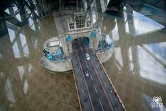 Look down (andrea.prave) Tags: road street uk bridge england london thames towerbridge ponte lookdown londres londra inghilterra tamigi     guardaregi