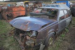 DSC_9806 (srblythe) Tags: uk classic cars ford abandoned graveyard car austin volkswagen scotland volvo rust fiat decay north rusty british scrapyard hyundai leyland vauxhall volvograveyard