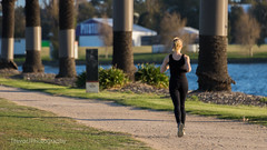 Jogging around the lake (trevorjphotography) Tags: trees water exercise bokeh australia melbourne running victoria palm depthoffield jogging fitness prettygirl laps candidphotography blackclothes exercising blondegirl albertparklake runningtrack blackoutfit midstride keepingfit backtocamera lonejogger womanjogging lonerunner tamronsp70300mm femalejogging canon750d