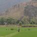 Mai Chau landscape