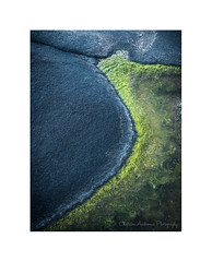 Convergence (Christos Andronis) Tags: blue black detail green rock moss bythesea absrtract