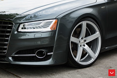 APR Stage 1 Audi S8 - 22-inch Vossen CV3-R -  Vossen Wheels 2016 - 1044 (VossenWheels) Tags: florida miami hr audi apr a8 aftermarket s8 audia8 vossen cv3 22wheels aprtuned hrsprings a8laudi goapr sdobbins vossencv3 samdobbins aprllc wheelsaudi sdobbinsvossen vossenaudi cv3r vossencv3r audis8wheels audis8aftermarketwheels 22saudi cv3audi audis822s audis8vossencv3 hroverride hraudis8 loweredaudis8 vossenaudis8 vossens8 loweredaudia8 apraudis8 aprstage1audis8 audia822 loweredfactoryairaudis8