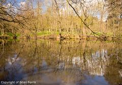 IMGP1090 (acornuser) Tags: park trees blackandwhite bw reflection water woodland garden landscape waterfall spring surrey cascade virginiawater blosom sigma1770 pentaxk3