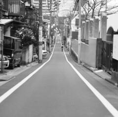 160305_ZenzaBronicaS2_007 (Matsui Hiroyuki) Tags: fujifilmneopan100acros zenzabronicas2 zenzanon150mmf35 epsongtx8203200dpi