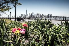 2016, april, Landscape, Liberty state park, New Jersey-3.jpg (David Campos Photography) Tags: landscape newjersey april libertystatepark 2016