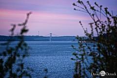 Tacoma Narrows Bridge (Octuck) Tags: bridge sunset sun water bay narrows steilacoom