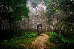IMGP1832 (mouryach) Tags: nepal chitwan sarangkot