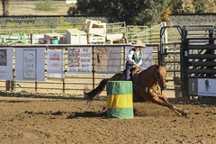 Cal Poly Rodeo (rocknwphotography) Tags: horses horse rodeo calpoly rodeolife