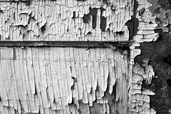 52 Week Photo Challenge - Week 18 - Artistic Texture (t conway) Tags:
