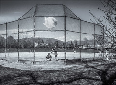 Batter Up! (Patricia Colleen) Tags: park game monochrome vancouver spring baseball strathconapark