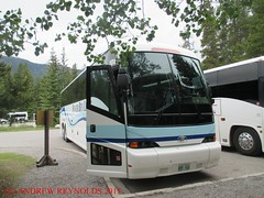2015 0623 01 MOTOR COACH INDUSTRIES WINIPEG J4500 COACH FITTED WITH 48 BUNK BEDS BEAVER BUS LINES (Andrew Reynolds transport view) Tags: urban canada bus lines rural coach with diesel beds transport beaver 01 motor passenger streetcar 48 bunk industries omnibus 2015 fitted 0623 winipeg transit america north mass j4500