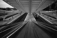 Liège-Guillemins (somekeepsakes) Tags: blackandwhite bw film monochrome station architecture analog europa europe belgium escalator bahnhof architektur sw analogue monochrom luik santiagocalatrava liège belgien rolltreppe minox35gt lüttich agfaapx400 2011 schwarzweis liègeguillemins